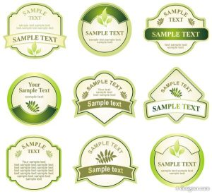 Green-bottle-label-Vector-29214