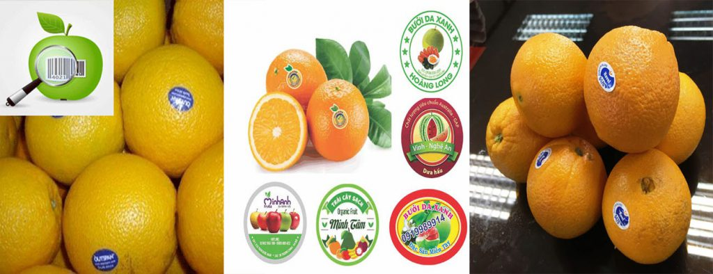 tem dán trái cây giá rẻ